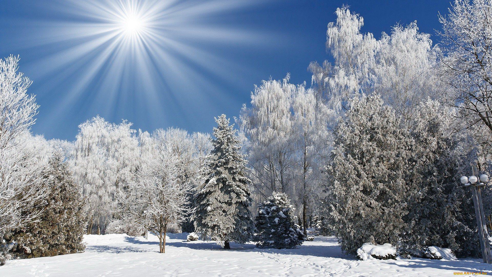 Картинки для рабочего стола зима пейзажи которая
